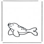Раскраски с животными - Тюлень 1
