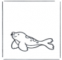 Тюлень 1
