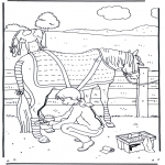 Раскраски с животными - Уход за лошадью