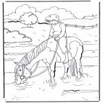 Раскраски с животными - В воде