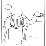 Раскраски с животными - Верблюд на солнце