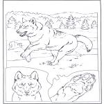 Раскраски с животными - Волк на снегу