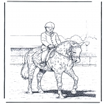 Раскраски с животными - Выездка
