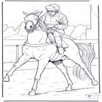 Раскраски с животными - Жокей на лошади